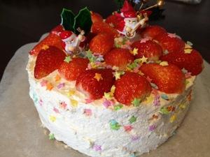 2011_xmas_cake.jpg